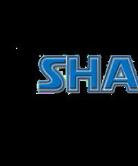 Shaggy Dog